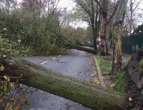 Employers abandoned duty of care during Storm Ophelia
